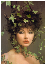 Kate Bush: Surrounded By Music